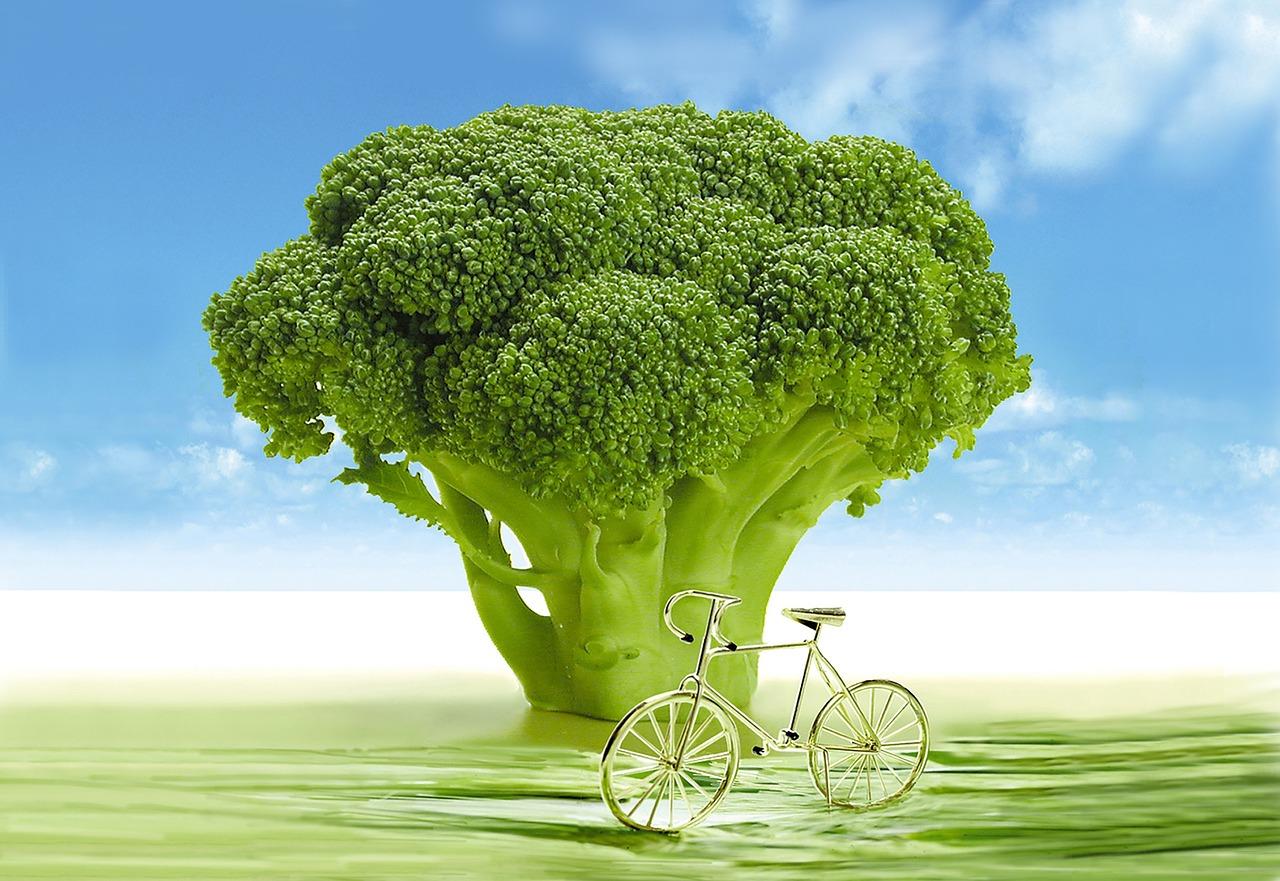 vegetables-694304_1280